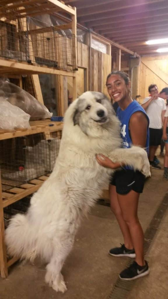 Making friends while touring a farm on Teen Treks summer bicycle tours.